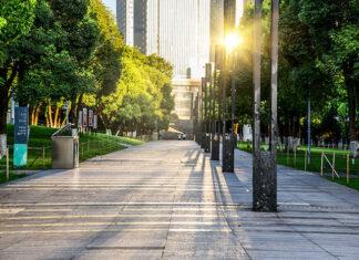 Współczesne trendy w kształtowaniu zieleni miejskiej