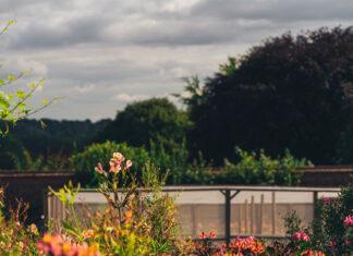 pięknym ogródkiem